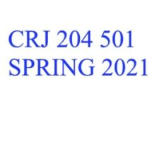 CRJ 204 Criminal Justice and the Urban Environment (Sp. 21)